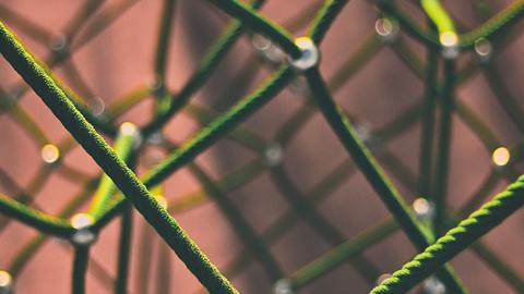 Netzwerk mit Knotenpunkten. (Link zu unserer Linkliste)