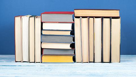 Ein Stapel Bücher. (Link zu: Literaturliste)