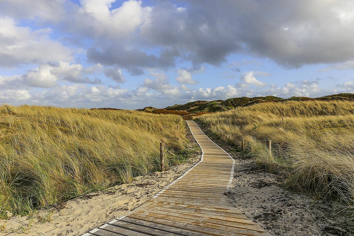 Bildbeschreibung: Weg zum Strand durch die Dünen.